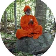 krshnananda